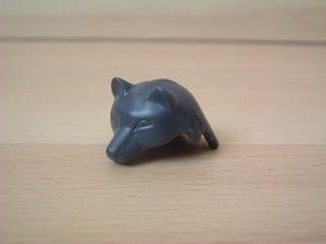 Tête de loup gris foncé