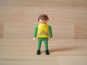 Chevalier col jaune