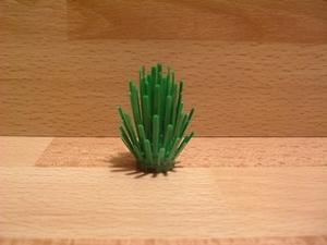 Fougère verte
