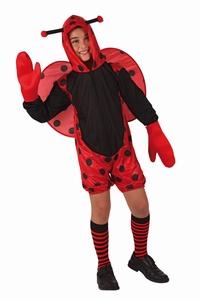 Deguisement costume Coccinelle 3-4 ans