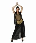 Deguisement costume Danseuse orientale noir et or