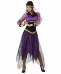 Deguisement costume Danseuse orientale XL