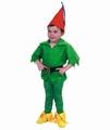 Deguisement costume Lutin peter pan 5-6 ans
