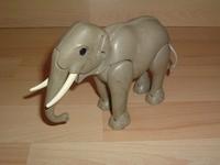 Eléphant sans oreille