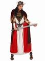 Deguisement costume Viking Femme  XL