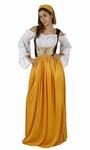 Deguisement costume Dame médiévale servante  XL