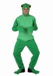 Deguisement costume Grenouille