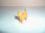 Chat orange