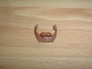 Barbe moustache marron