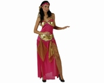 Deguisement costume Danseuse orientale rose XL