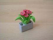 Pot avec fleur neuf