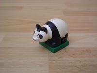 Panda bébé