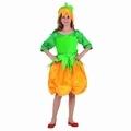 Deguisement costume Lutin Citrouille 5-6 ans