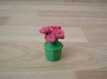 Pot de fleurs neuf