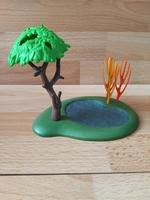 Mare d'eau avec arbre et roseaux