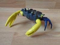 Crabe géant