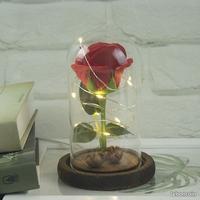 Rose sous verre avec led