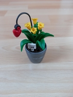 Pot de fleurs jaunes