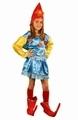 Deguisement costume Lutin elfe 7-9