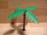 Grand palmier