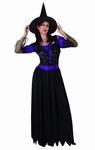 Deguisement costume Sorcière femme violet et noir
